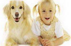 Помощь детям при укусах животных