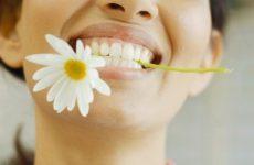 Лекарственные растения, применяемые в стоматологии
