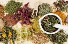 Очищающие травяные сборы