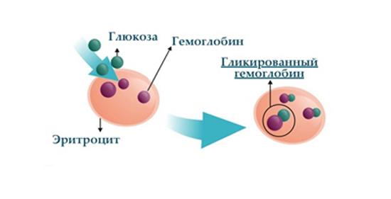 диабет гликозилированный гемоглобин